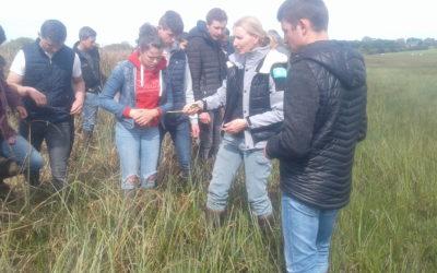 Visite aux marais de la Sangsurière – «Made in viande»